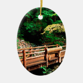 Park Sol Duc Falls Trail Olympic Ceramic Oval Ornament