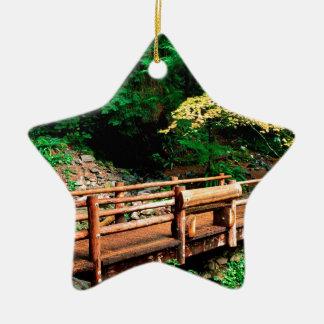 Park Sol Duc Falls Trail Olympic Ceramic Star Ornament