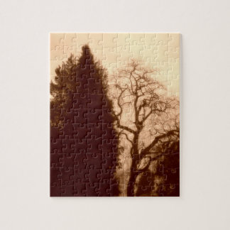 Park Trees Small Puzzle Gift