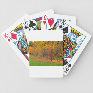 Park with tree lined maple trees in peak fall colo bicycle playing cards