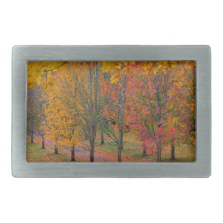 Park with tree lined maple trees in peak fall colo rectangular belt buckle