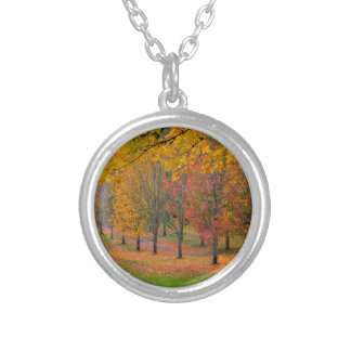 Park with tree lined maple trees in peak fall colo silver plated necklace