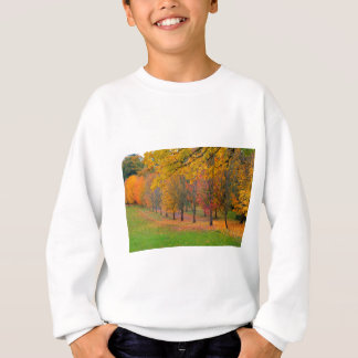 Park with tree lined maple trees in peak fall colo sweatshirt