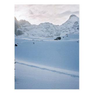 Parker Ridge Banff Park Icefields Alberta Canada Postcard