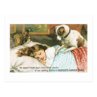 Parkers Ginger Tonic Girl with Dog Postcard