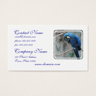 parrot-23 business card