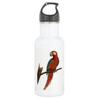 Parrot 532 Ml Water Bottle