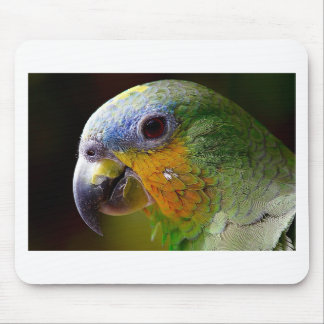 Parrot Amazon Animals Bird Green Exotic Bird Mouse Pad