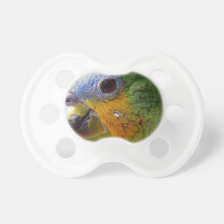 Parrot Amazon Animals Bird Green Exotic Bird Pacifier