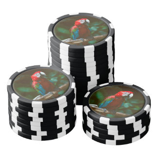 Parrot bird poker chips set