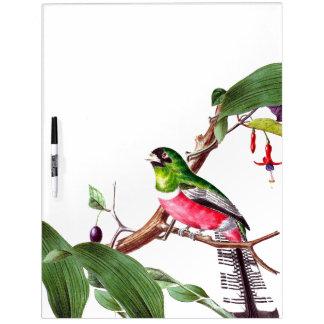 Parrot Bird Wildlife Animal Floral Dry Erase Board