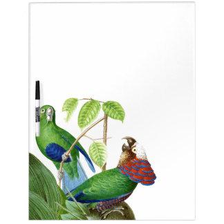 Parrot Birds Wildlife Animals Dry Erase Board