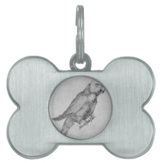 Parrot by Albrecht Durer Pet Tags