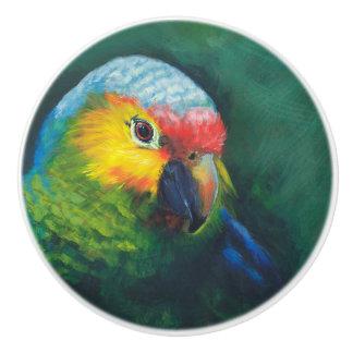 Parrot cabinet/furniture knobs