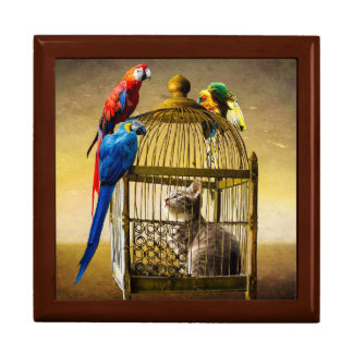 Parrot Caught Cat Golden Oak Gift Box