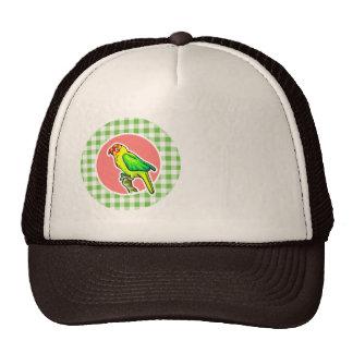 Parrot; Green Gingham Hat
