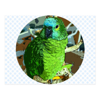 Parrot Green Postcard