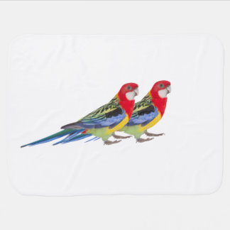 Parrot image for Baby Blanket