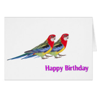 Parrot image for Birthday greeting card