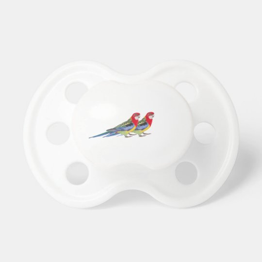 Parrot image for Pacifier