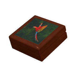 Parrot in Flight Gift Box