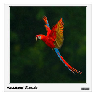Parrot in Flight Wall Decal