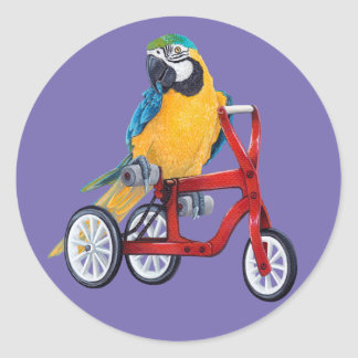 Parrot Macaw on Tricycle bike Classic Round Sticker