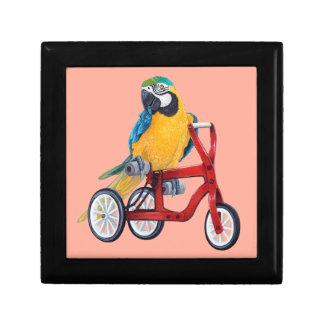 Parrot Macaw on Tricycle bike Keepsake Box