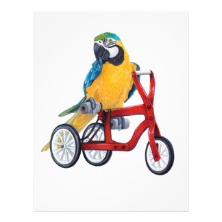 Parrot Macaw on Tricycle bike Letterhead