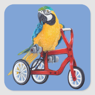 Parrot Macaw on Tricycle bike Square Sticker