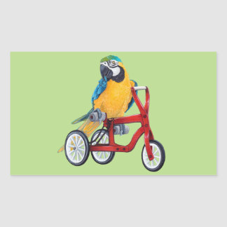 Parrot Macaw on Tricycle bike Sticker