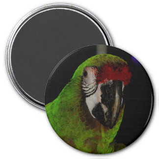 Parrot 3 Inch Round Magnet