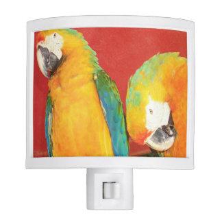 Parrot, Night Light