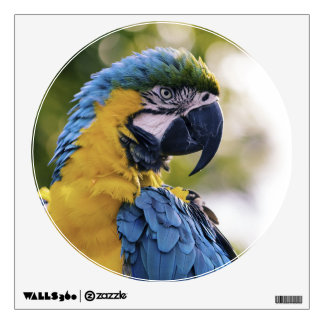 Parrot Profile Portrait Photograph Wall Sticker