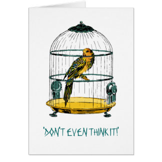 Parrot Quote Greeting Card Card