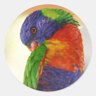 Parrot Round Sticker