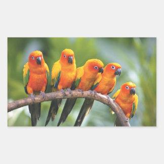 parrot sticker 3