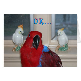 Parrot Themed Card