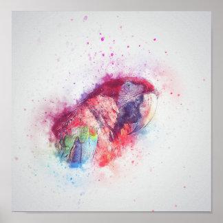 Parrot Watercolor Poster