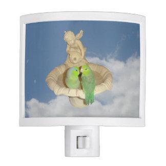 Parrotlets Nite Lights