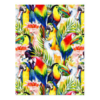 Parrots And Palm Leaves Postcard