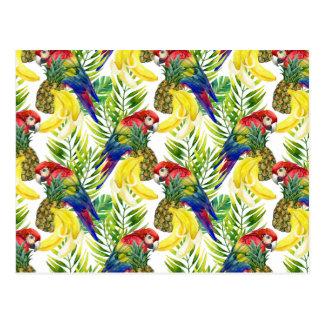 Parrots And Tropical Fruit Postcard