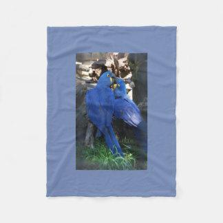 Parrots Blanket