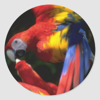 Parrots In Love Sticker