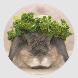 Parsley bunny (sticker) round sticker