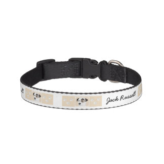 Parson Jack Russell Terrier Painting - Dog Art Pet Collar