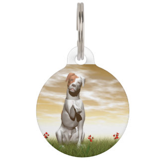 Parsons dog pet name tag