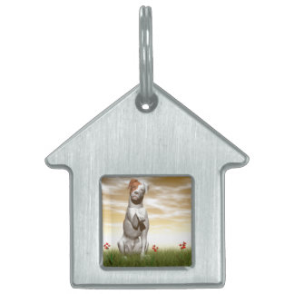 Parsons dog pet tag