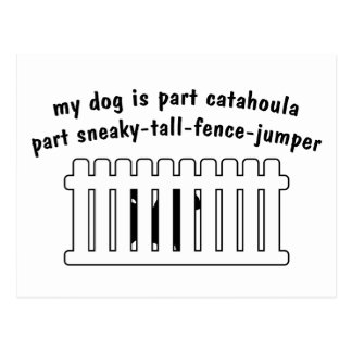 Part Catahoula Part Fence-Jumper Postcard
