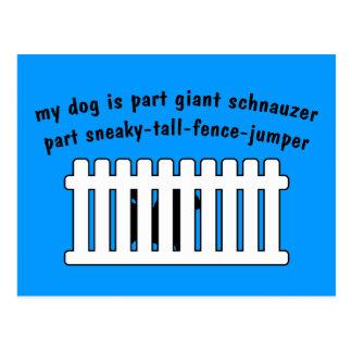 Part Giant Schnauzer Part Fence-Jumper Postcards